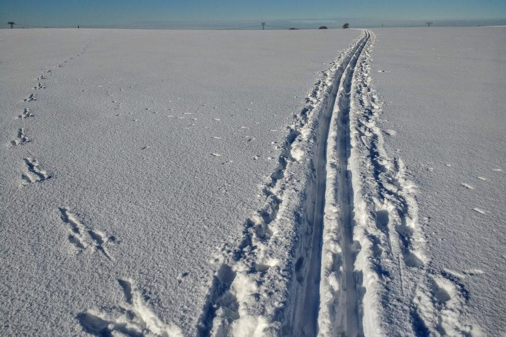Ski-Spuren